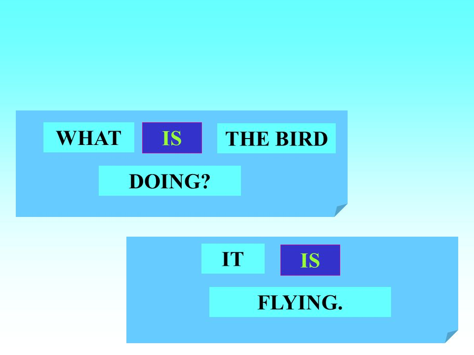 WHAT IS THE BIRD DOING IT IS FLYING.