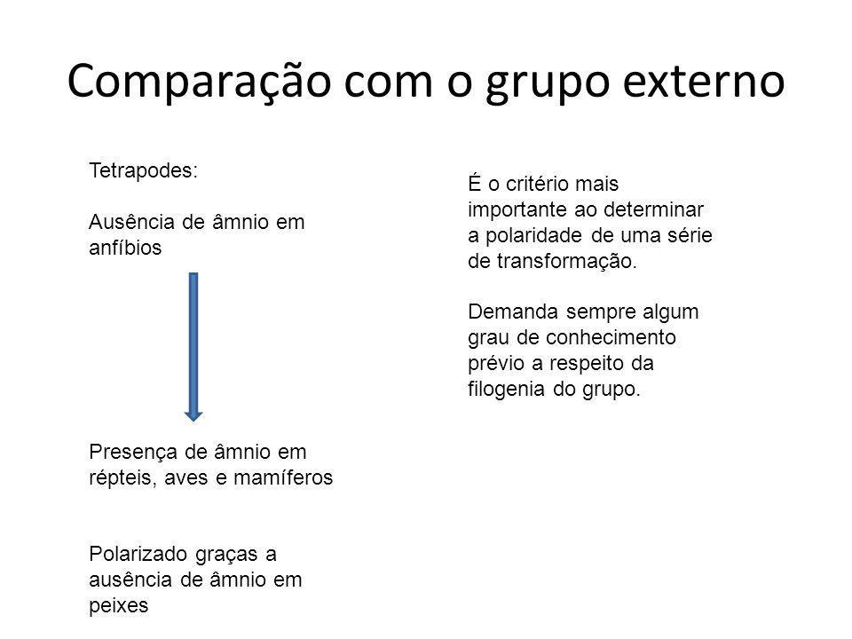 Comparação com o grupo externo