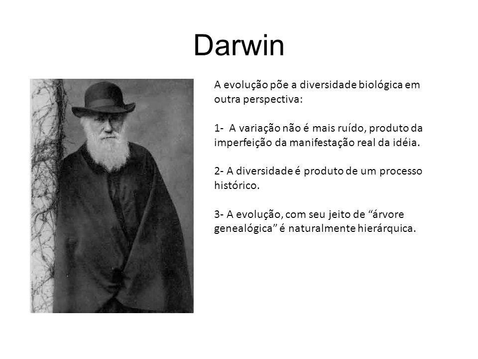 Darwin A evolução põe a diversidade biológica em outra perspectiva: