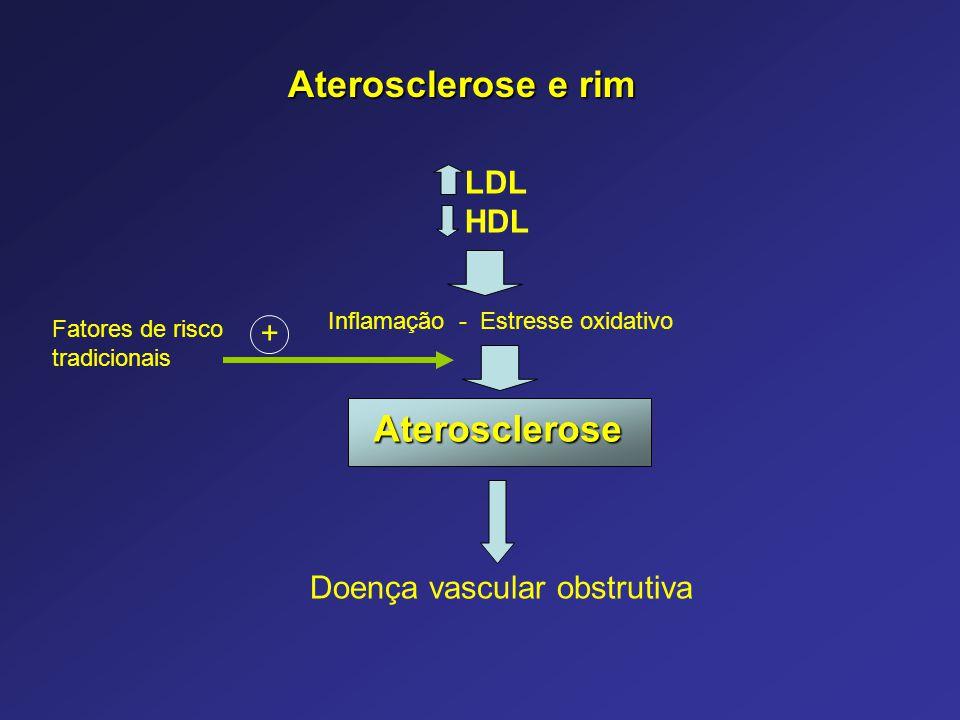 Aterosclerose e rim Aterosclerose LDL HDL Doença vascular obstrutiva