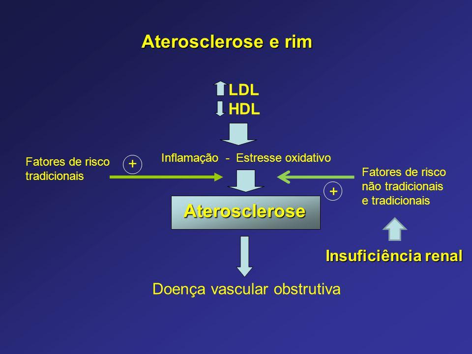 Aterosclerose e rim Aterosclerose LDL HDL Insuficiência renal