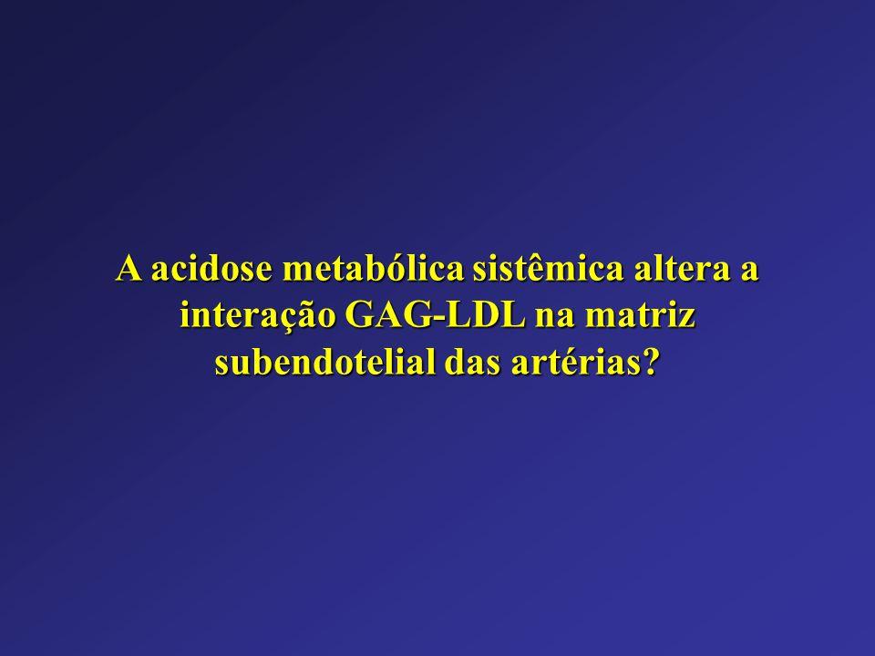 A acidose metabólica sistêmica altera a interação GAG-LDL na matriz subendotelial das artérias