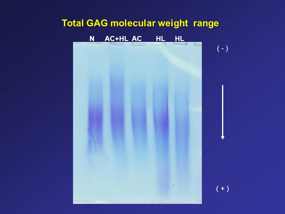 Total GAG molecular weight range