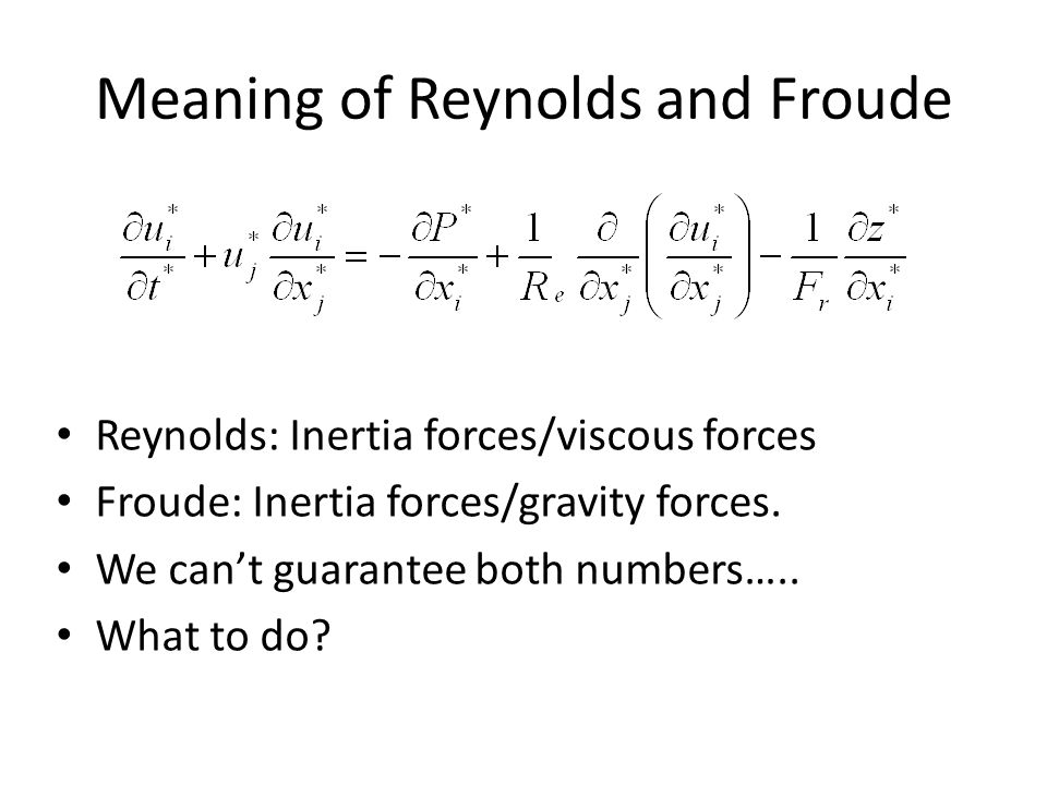 Meaning of Reynolds and Froude