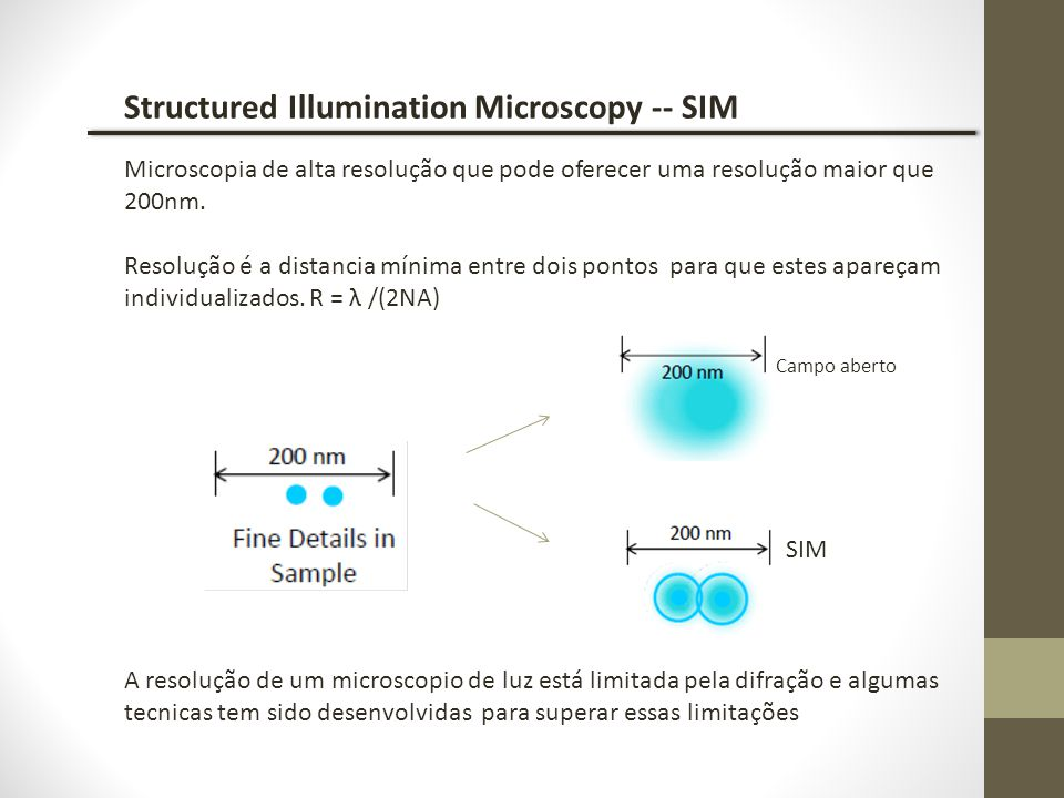 Structured Illumination Microscopy -- SIM