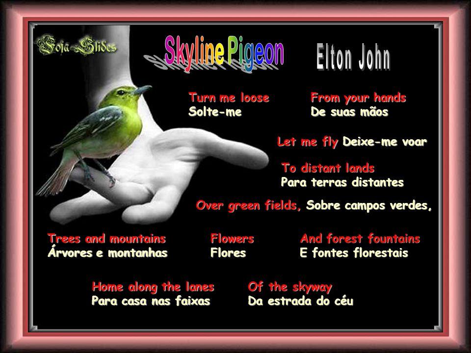Skyline Pigeon Elton John Turn me loose Solte-me