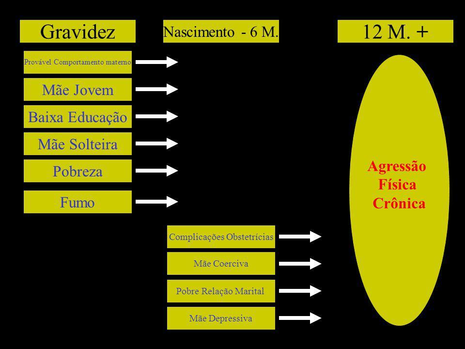 Gravidez 12 M. + Nascimento - 6 M. Mãe Jovem Baixa Educação Agressão