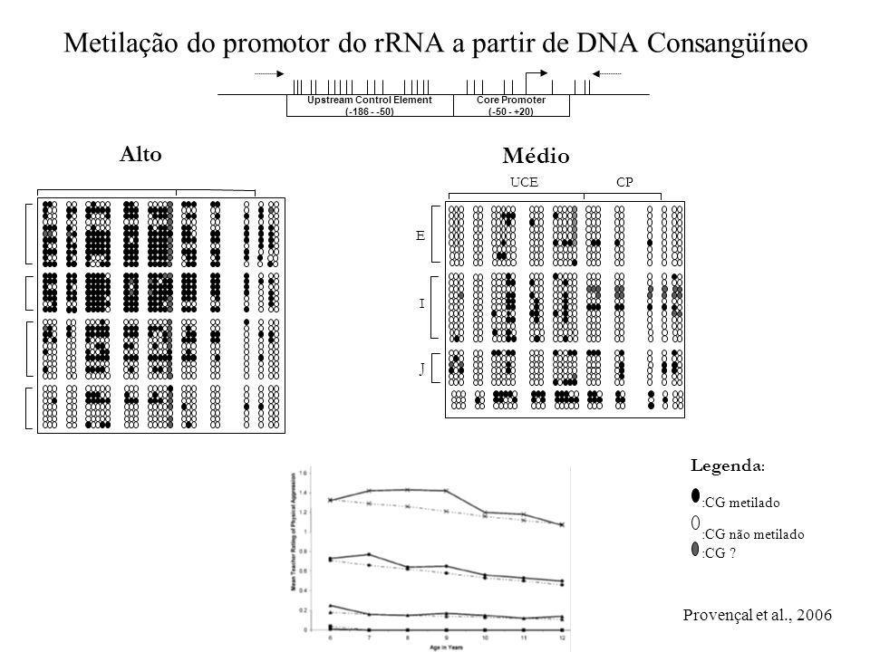 Metilação do promotor do rRNA a partir de DNA Consangüíneo