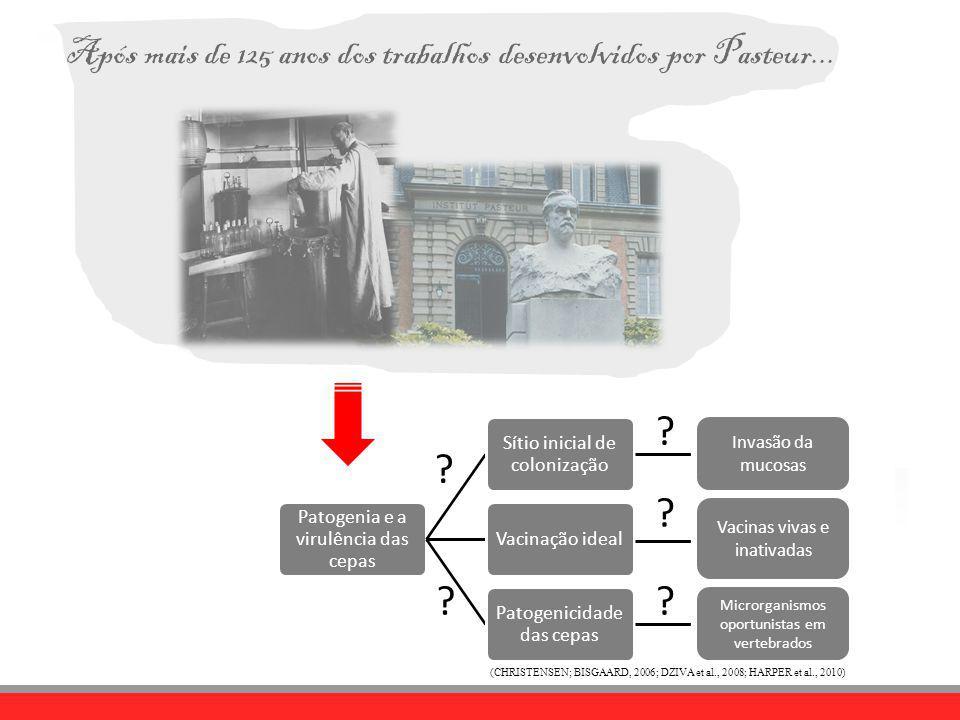 Após mais de 125 anos dos trabalhos desenvolvidos por Pasteur...