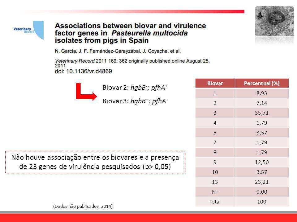 Biovar 2: hgbB-; pfhA+ Biovar 3: hgbB+; pfhA- Biovar. Percentual (%) 1. 8,93. 2. 7,14. 3. 35,71.