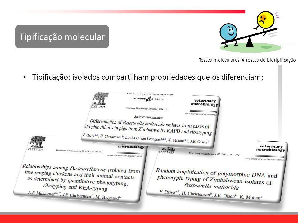 Tipificação molecular