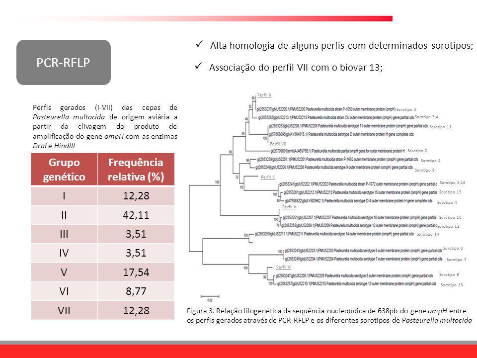 PCR-RFLP Grupo genético Frequência relativa (%) I 12,28 II 42,11 III