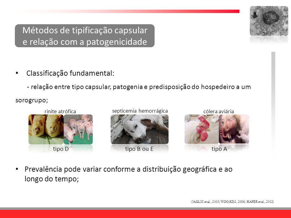 Métodos de tipificação capsular e relação com a patogenicidade