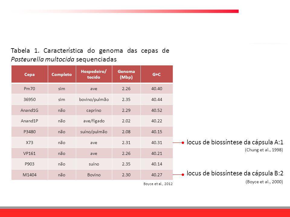 Tabela 1. Característica do genoma das cepas de Pasteurella multocida sequenciadas