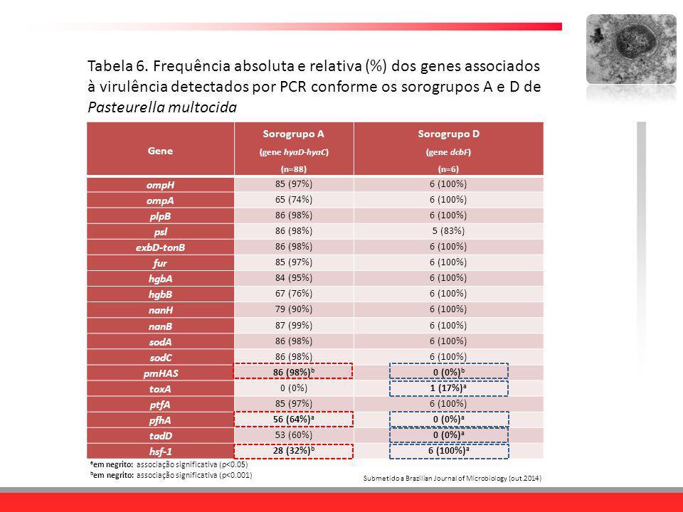 Tabela 6. Frequência absoluta e relativa (%) dos genes associados à virulência detectados por PCR conforme os sorogrupos A e D de Pasteurella multocida