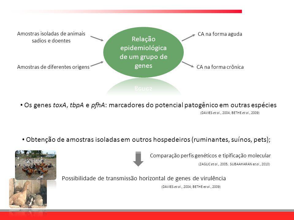 Relação epidemiológica de um grupo de genes