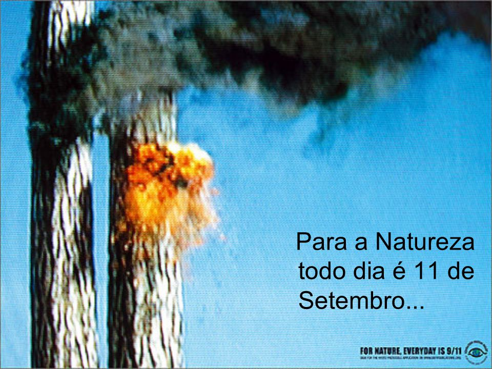 Para a Natureza todo dia é 11 de Setembro...