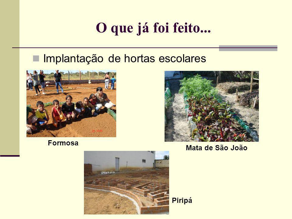 O que já foi feito... Implantação de hortas escolares Formosa