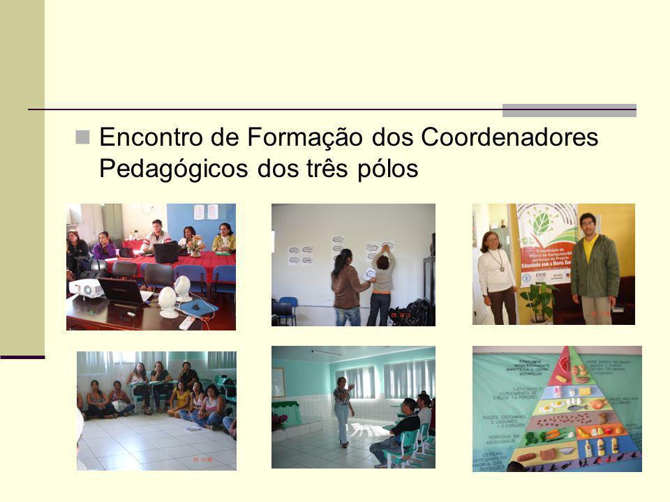 Encontro de Formação dos Coordenadores Pedagógicos dos três pólos