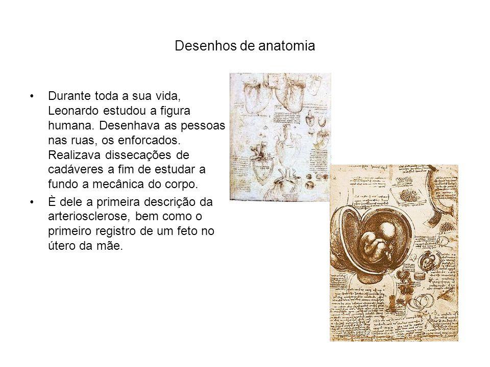 Desenhos de anatomia