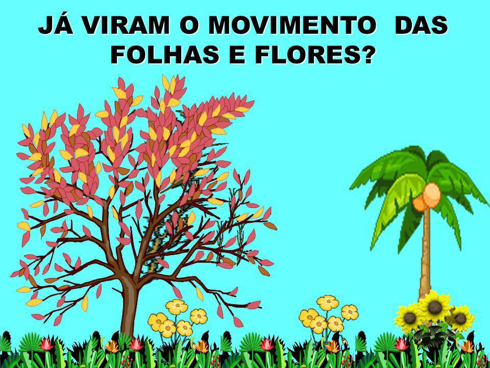 JÁ VIRAM O MOVIMENTO DAS FOLHAS E FLORES