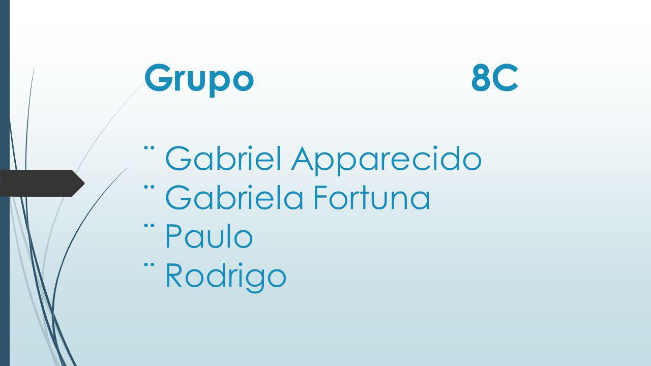 Grupo 8C ¨ Gabriel Apparecido ¨ Gabriela Fortuna ¨ Paulo ¨ Rodrigo