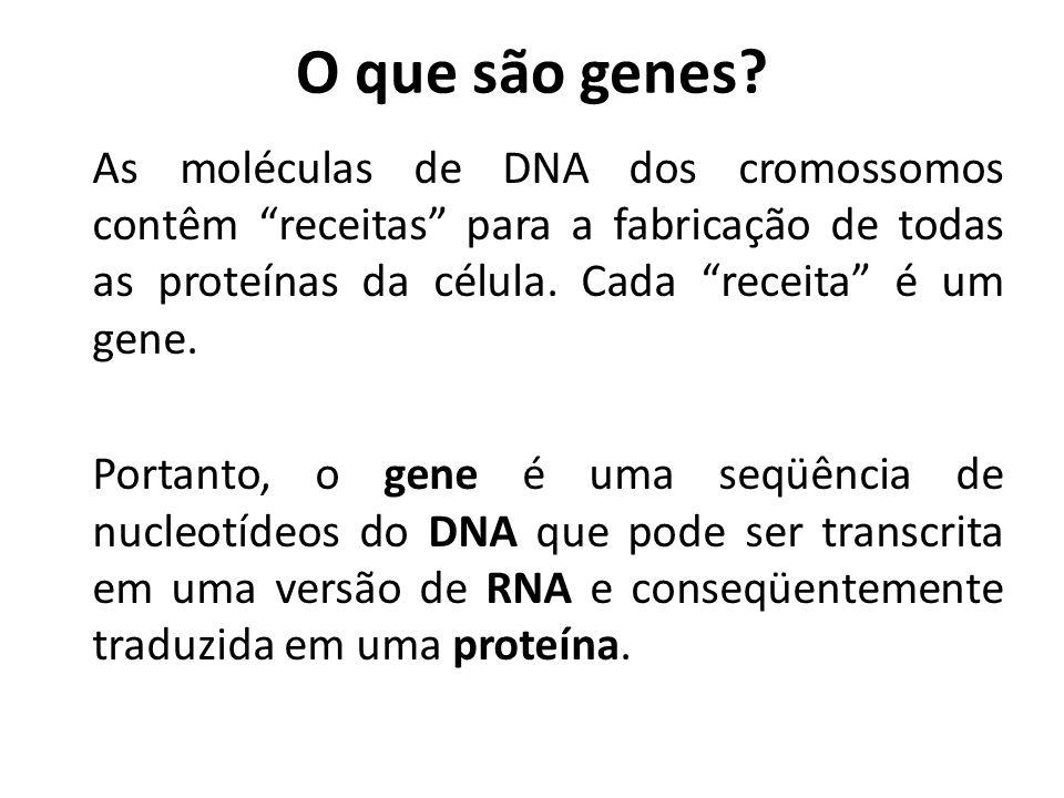 O que são genes