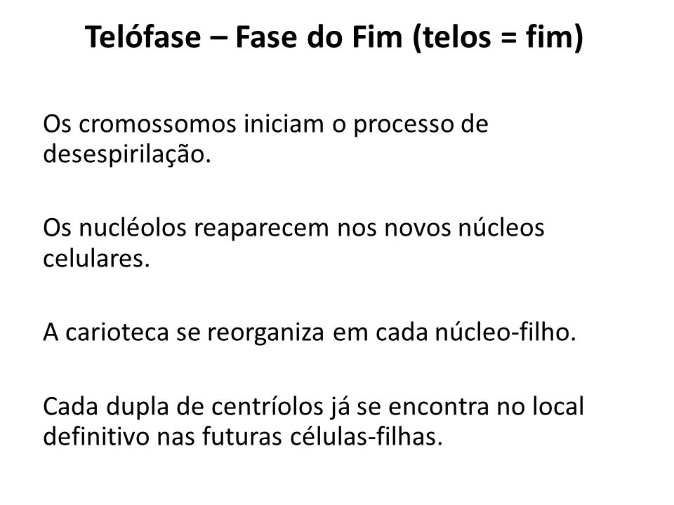 Telófase – Fase do Fim (telos = fim)