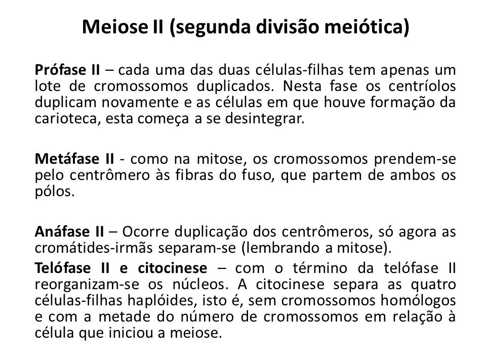 Meiose II (segunda divisão meiótica) Prófase II – cada uma das duas células-filhas tem apenas um lote de cromossomos duplicados.