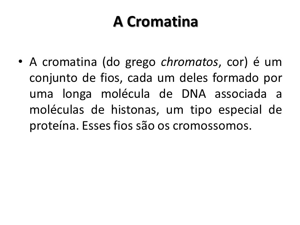 A Cromatina