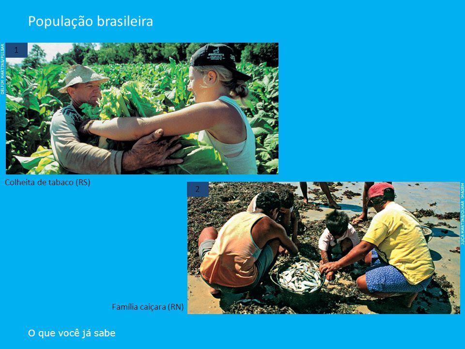 População brasileira 1 Colheita de tabaco (RS) 2 Família caiçara (RN)