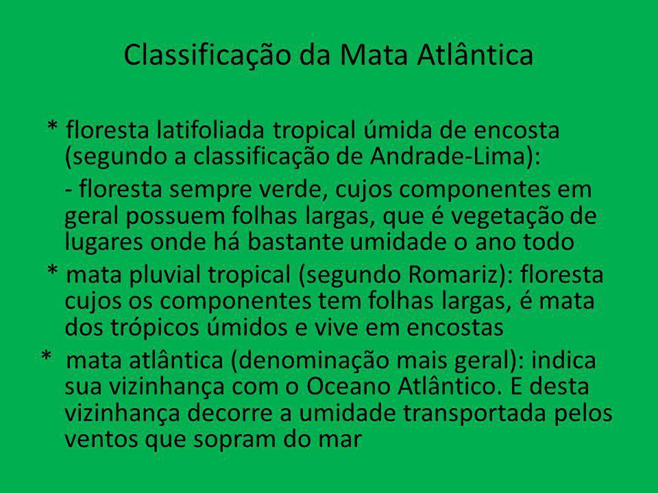 Classificação da Mata Atlântica