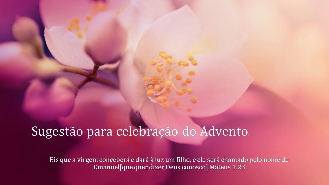 Sugestão para celebração do Advento