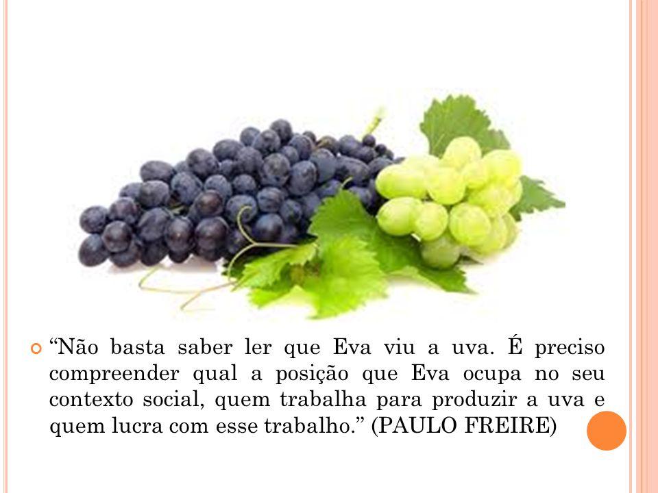 Não basta saber ler que Eva viu a uva
