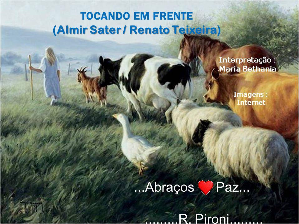 (Almir Sater / Renato Teixeira)