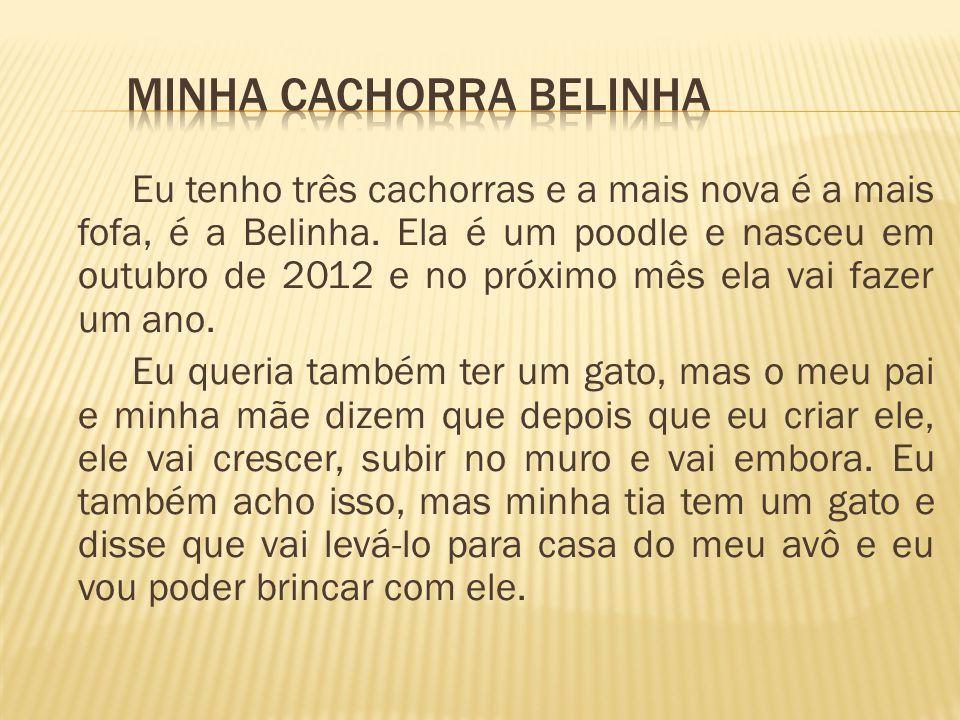 MINHA CACHORRA BELINHA