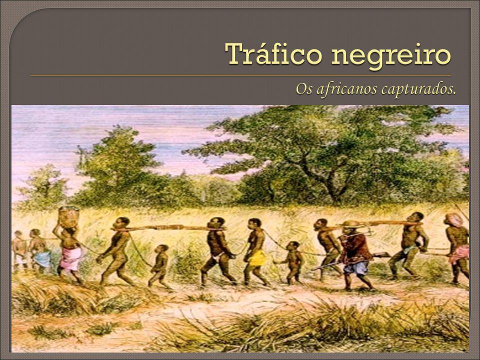 Os africanos capturados.