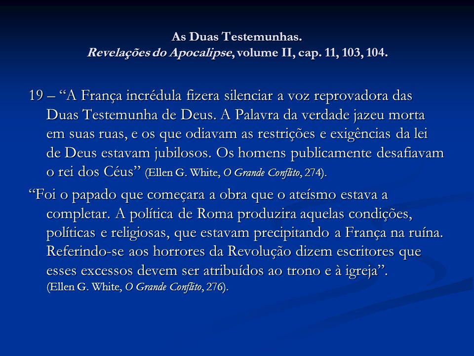 As Duas Testemunhas. Revelações do Apocalipse, volume II, cap