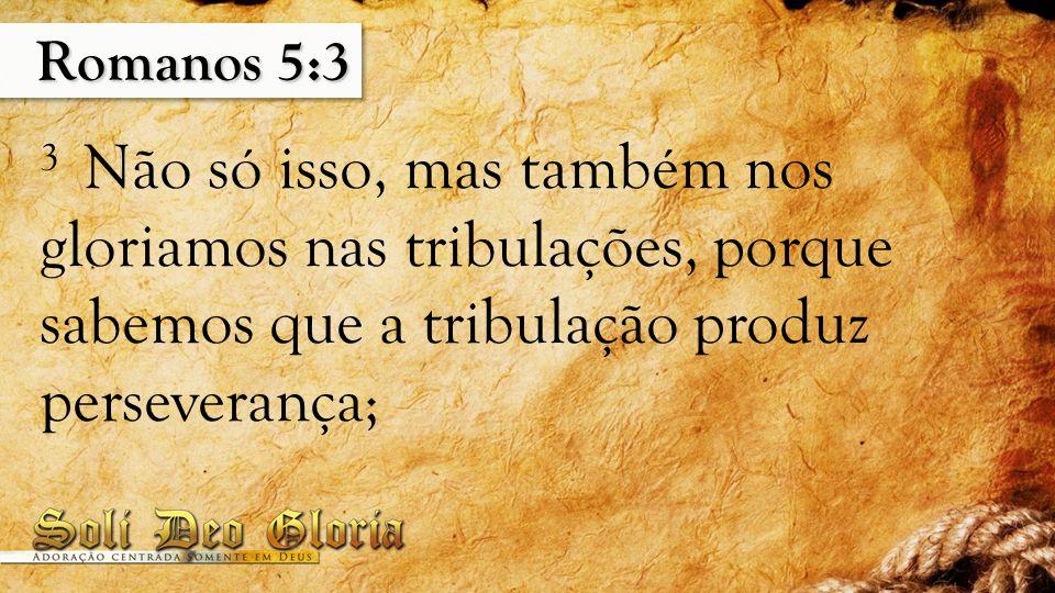 Romanos 5:3 3 Não só isso, mas também nos gloriamos nas tribulações, porque sabemos que a tribulação produz perseverança;