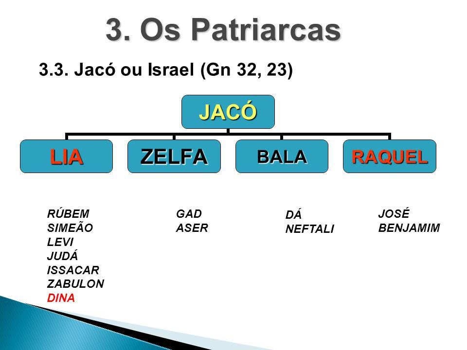 3. Os Patriarcas 3.3. Jacó ou Israel (Gn 32, 23) RÚBEM SIMEÃO LEVI