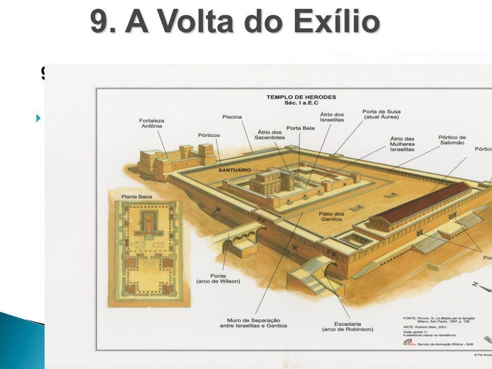 9. A Volta do Exílio 9.2. Um Novo Templo
