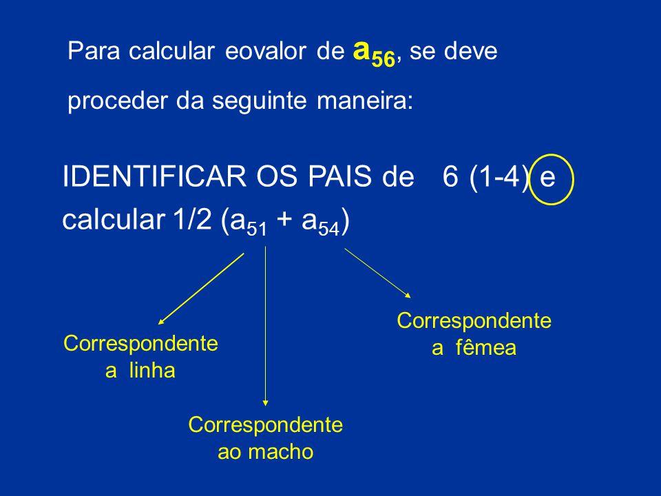 IDENTIFICAR OS PAIS de 6 (1-4) e calcular 1/2 (a51 + a54)