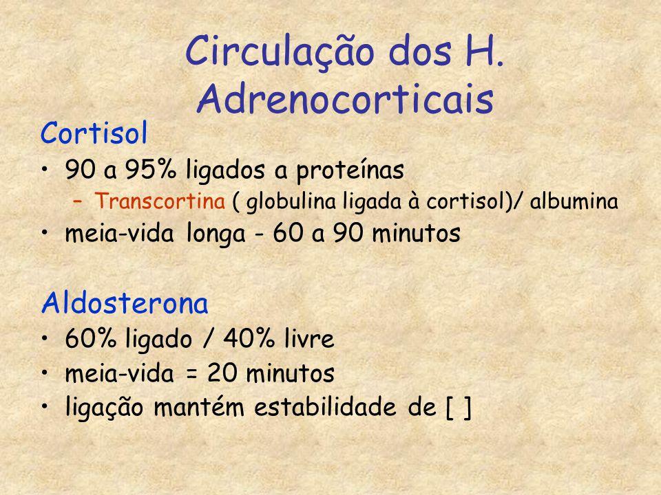 Circulação dos H. Adrenocorticais