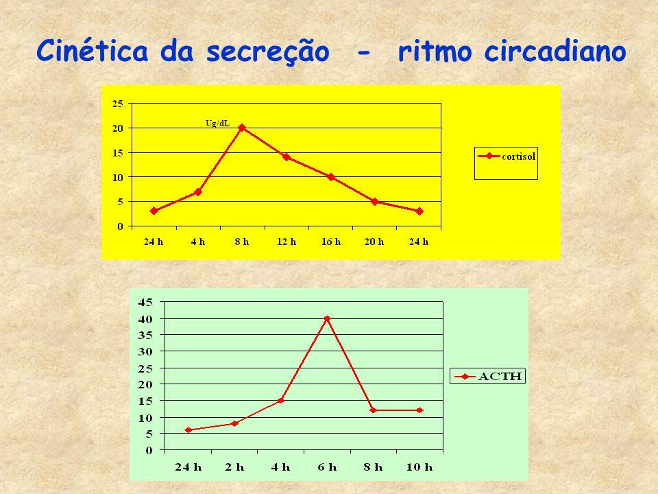 Cinética da secreção - ritmo circadiano