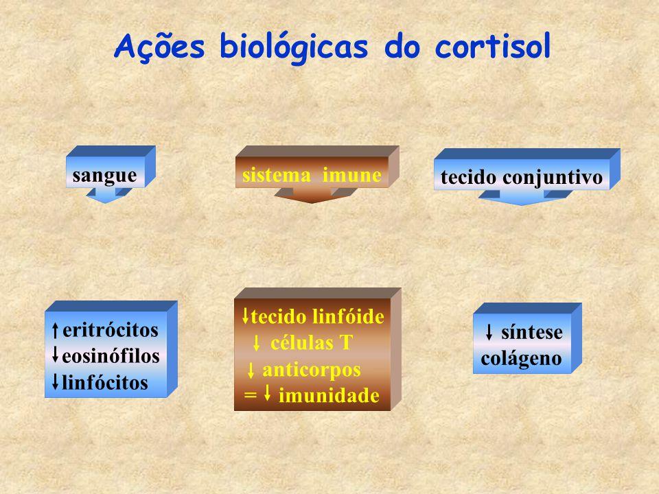 Ações biológicas do cortisol