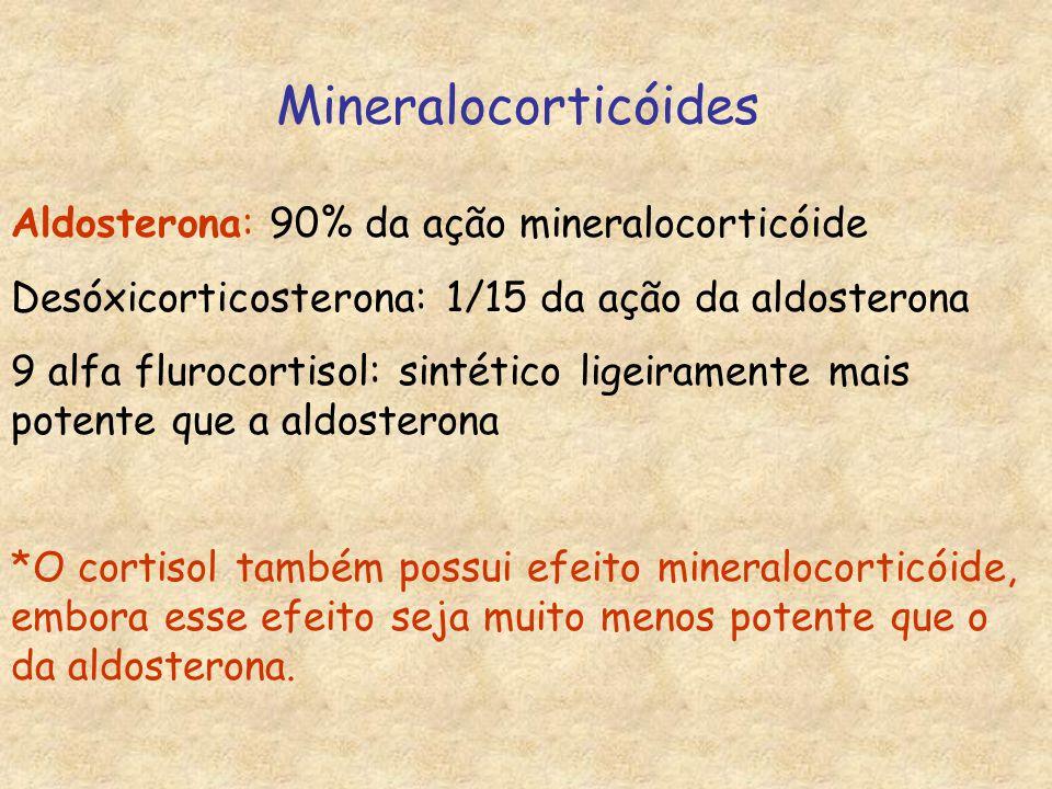 Mineralocorticóides Aldosterona: 90% da ação mineralocorticóide