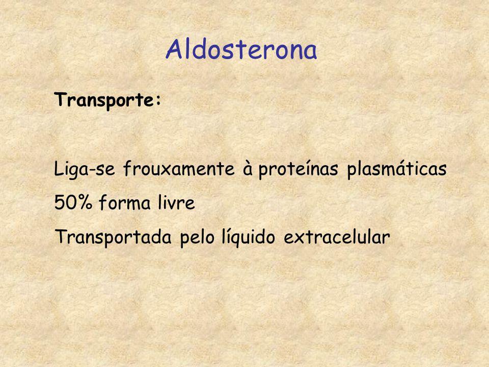 Aldosterona Transporte: Liga-se frouxamente à proteínas plasmáticas