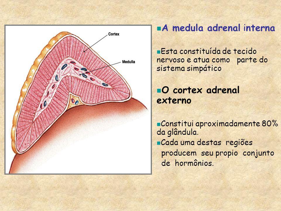 A medula adrenal interna