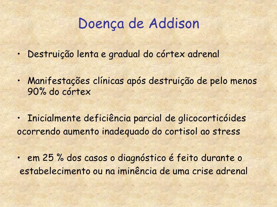 Doença de Addison Destruição lenta e gradual do córtex adrenal