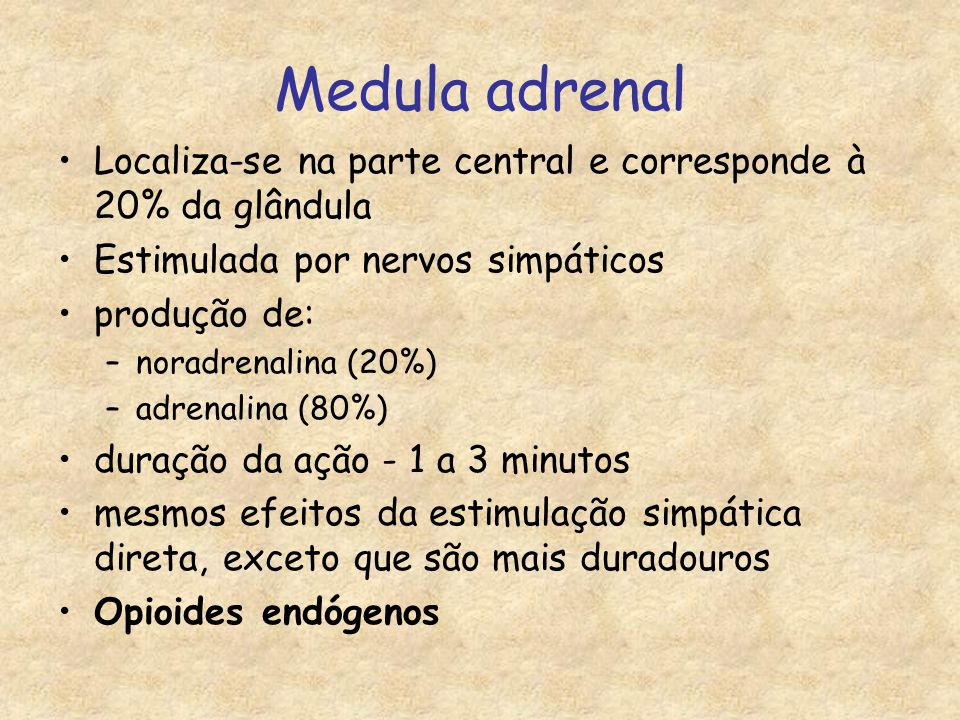 Medula adrenal Localiza-se na parte central e corresponde à 20% da glândula. Estimulada por nervos simpáticos.